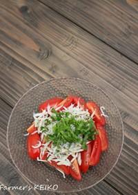【農家のレシピ】トマトとしらすのサラダ