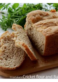 コオロギとそば粉パン 風味豊か香ばしい!