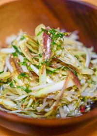【薬味が主役!】みょうがと葱の薬味サラダ
