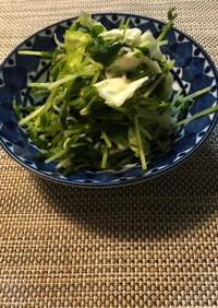 豆苗とキャベツのサラダ