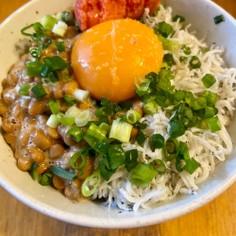 納豆しらすご飯