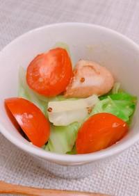 キャベツのカレーマスタードサラダ