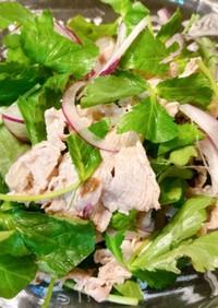 三つ葉と赤玉ねぎの豚しゃぶサラダ