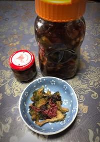 ゴーヤの赤紫蘇梅酢漬け