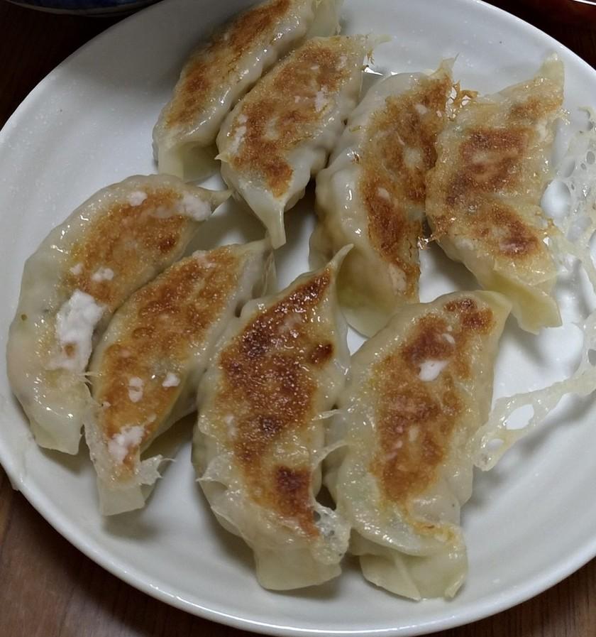 卯の花で作った肉なし餃子