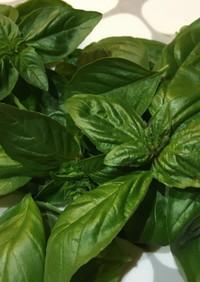 バジルの葉を茹でて冷凍保存しまーす♪