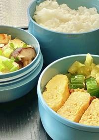 タロの弁当29 白菜ベーコン煮!だし巻き