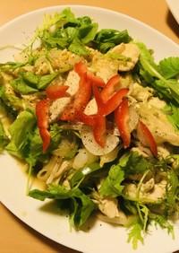 鶏むね肉&野菜炒め●ベビーリーフサラダ
