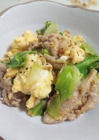 卵と豚肉の炒り付け  レタスver