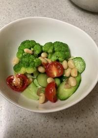 ブロッコリーと煮豆の簡単サラダ