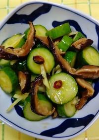 胡瓜と干し椎茸の中華炒め漬け