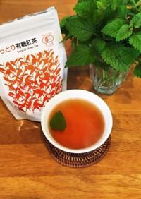 鳥取紅茶陣構のレモンバームティー