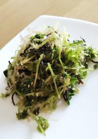 豆苗の塩こぶサラダ
