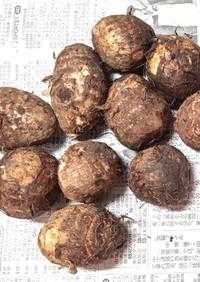 【龍愛】里芋の保存方法