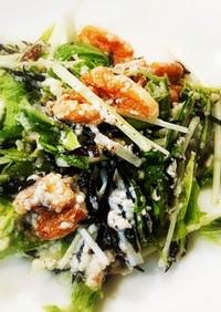 和えるだけ!豆腐とひじきと水菜のサラダ