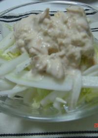 白菜しゃきっとサラダ!