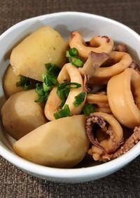 イカと里芋のほうじ茶煮☆煮物