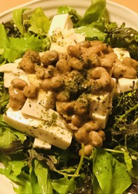 毎日の納豆●豆腐&ベビーリーフのサラダ