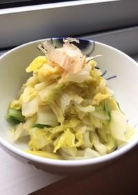 わさび風味で♡白菜の簡単おひたし