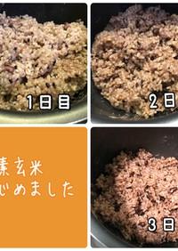 炊飯器で発芽酵素玄米