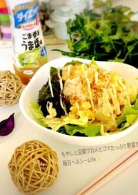 残り野菜で彩り簡単  豆腐もやしサラダ✨