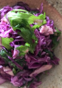 春菊と紫キャベツのツナレモンマリネ