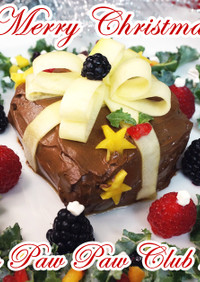犬用クリスマスケーキ2020