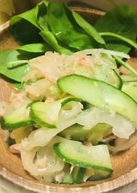 辛くない玉ねぎときゅうりとツナのサラダ
