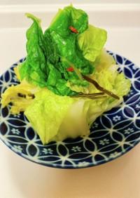 白菜のお漬物