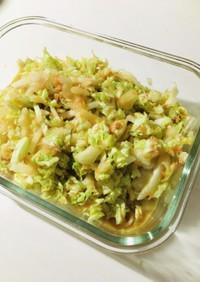 無限白菜サラダ