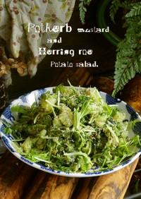 水菜と数の子のポテトサラダ