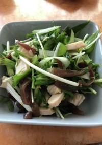 九条ネギと水菜とキクラゲのサラダ