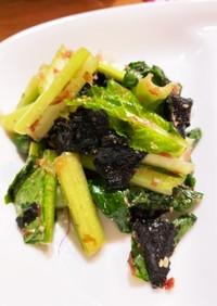 生のまんまで すぐ美味しい 小松菜サラダ