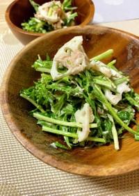 蓮根と水菜の和風ツナマヨサラダ*+