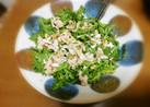 春菊とツナのナッツサラダ