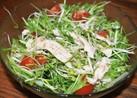 シャカシャカ水菜のチキンサラダ