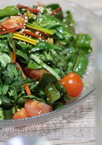 お洒落副菜!春菊とほうれん草のサラダ