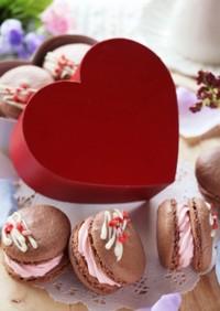 バレンタイン♡ショコラとベリーのマカロン