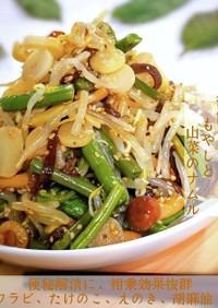 御飯がすすむもやしと山菜のナムル