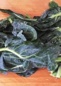 冷凍ストック☆ブロッ葉(葉野菜)の保存法