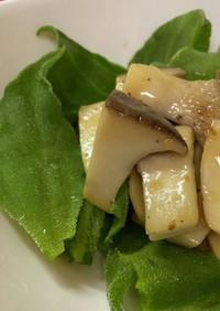 アイスプラントとエリンギのサラダ