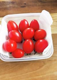 トマト&ミニトマト保存方法