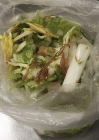 生の白菜をやみつきサラダに