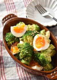 ブロッコリーとゆで卵の粒マスタードサラダ