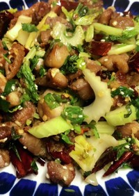 鶏肉の角切りとトウガラシの炒め物