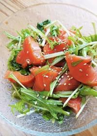 水菜とサーモンのピリ辛サラダ