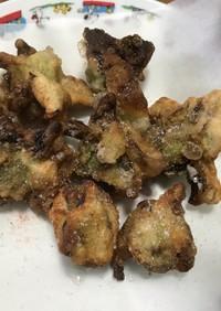 岩塩で食べるふきのとう天ぷら