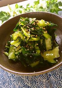 小松菜ときゅうりの塩こうじ浅漬け
