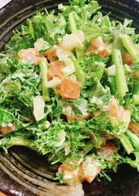 サーモンとからし菜の和えサラダ