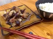 しょうがたっぷり♬猪肉と豚バラのしぐれ煮の写真